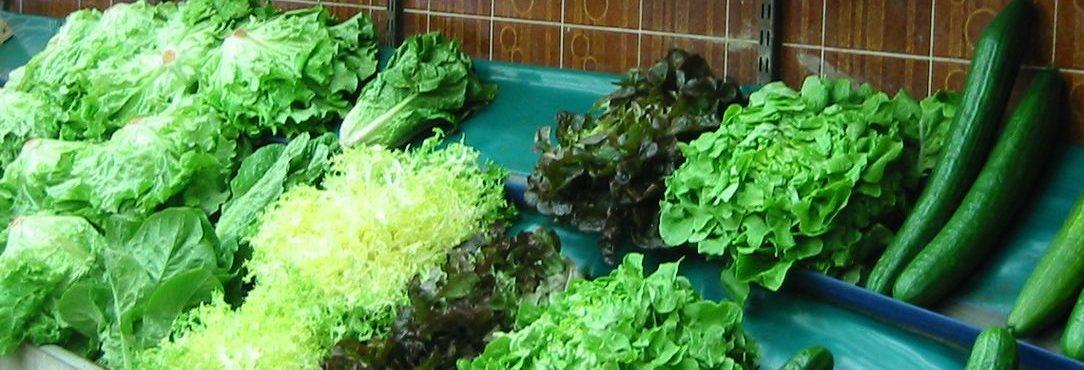alimentation legume