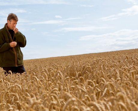 # Agribashing