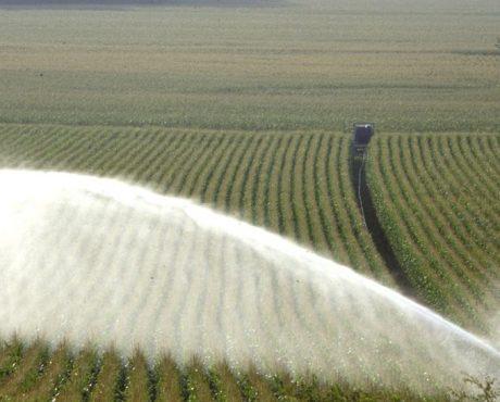 Irrigation maïs photo Vivadour